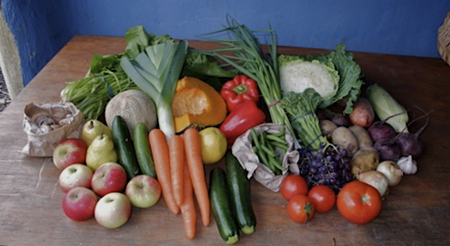 Family box of organic fruit and vegetables