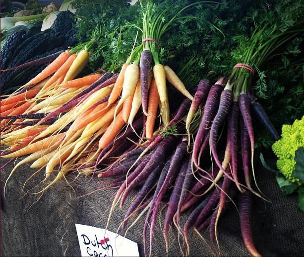 dutch carrots
