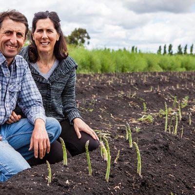 Cafresco asparagus