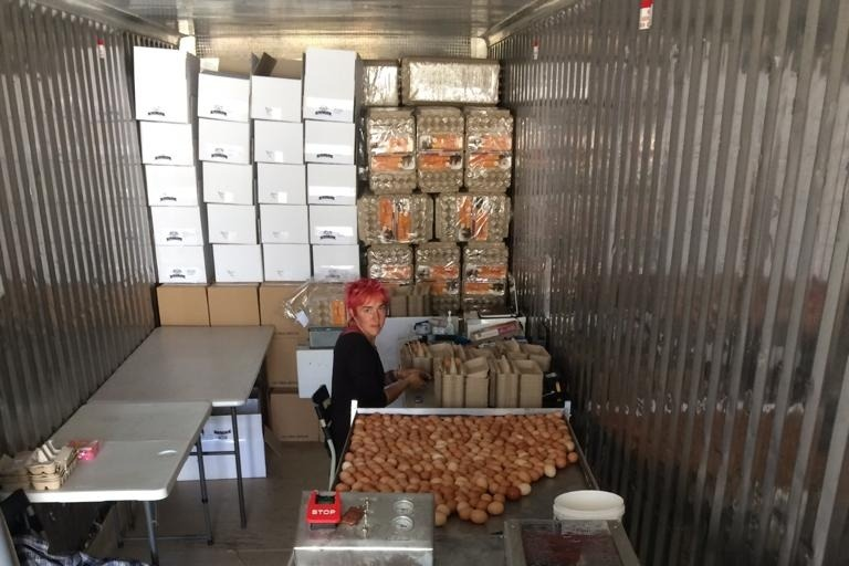 Abundance Eggs - Kali sorting
