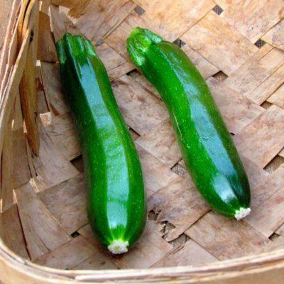 zucchini basket