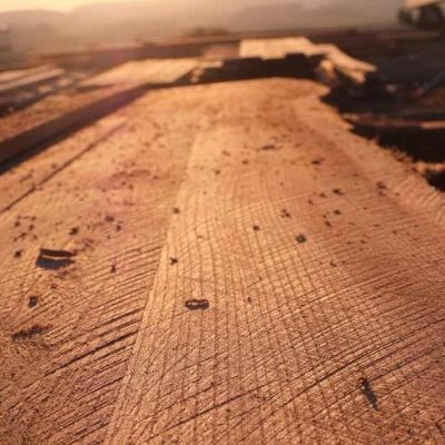 Fair Wood Agroforestry