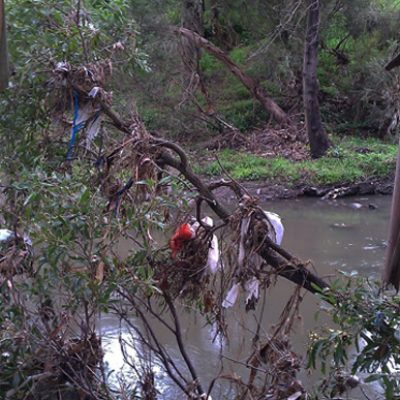 Merri Creek plastic