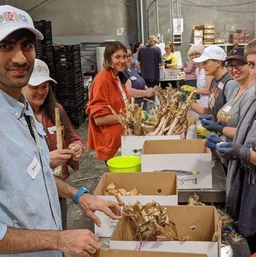 Ori Coop garlic cleaning