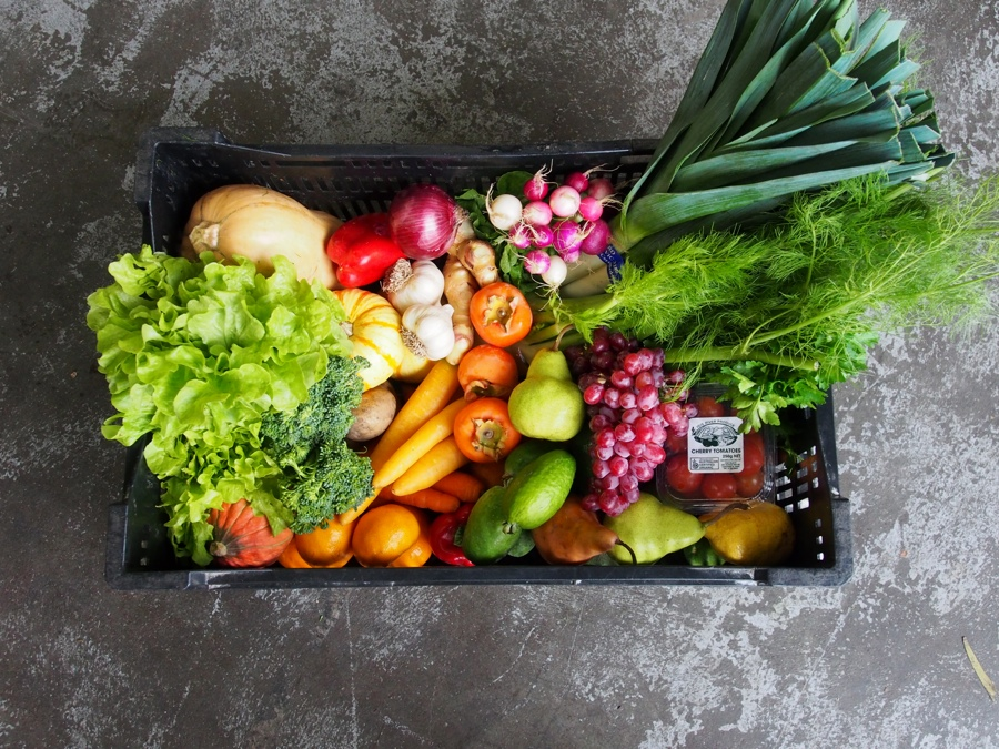 Fair Food set box