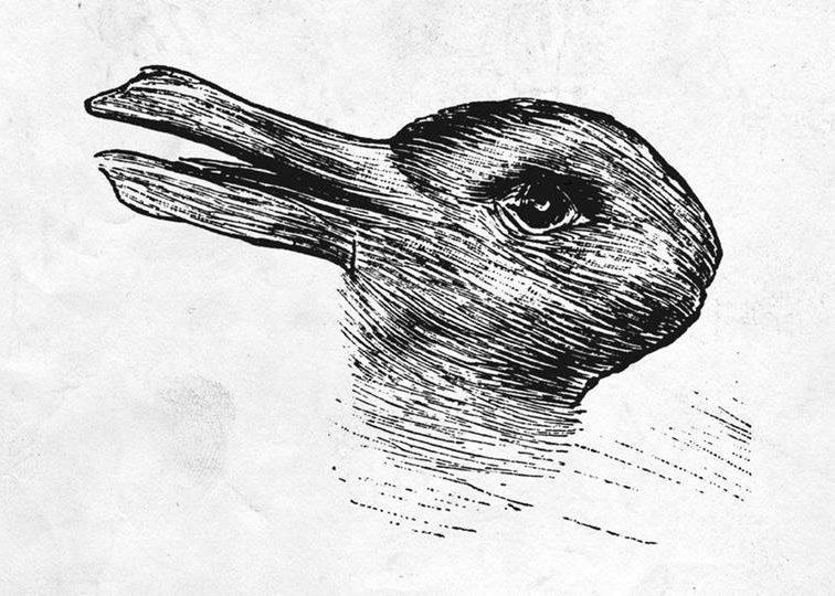 Seeing the rabbit