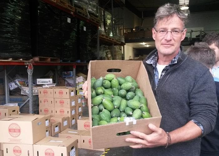Feijoas / New Food Hosts up and running